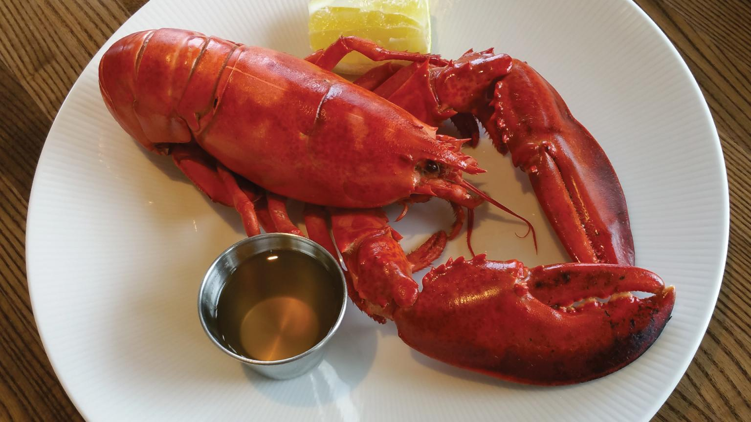 Maine boiled lobster is always in season at Stage Neck Inn