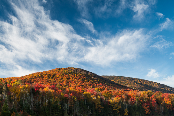 Fall Foliage When & Where to Go