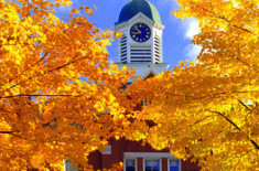 Leaf Peeper Packages