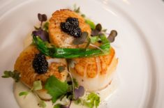 Scallops at Sage Inn on a New England cooking vacation.